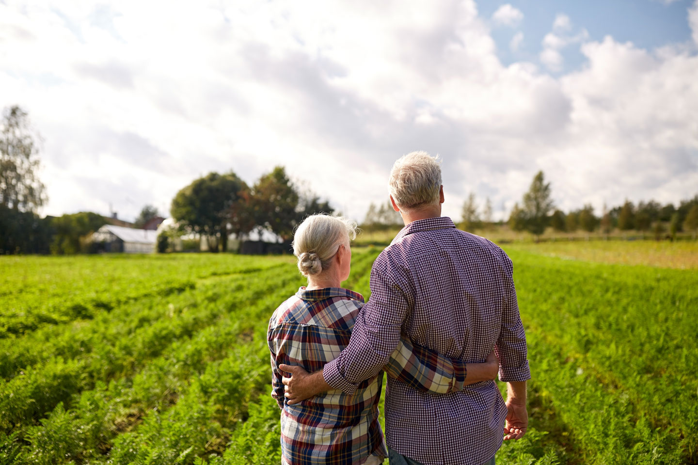 older couple staring out at their land and royalties large open green grass land couple peregrine energy partners