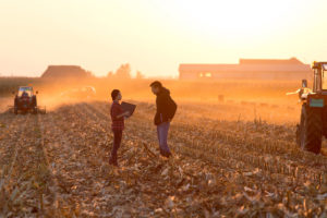 woman and man stand out amongst crops as trailers and sowing happens in background